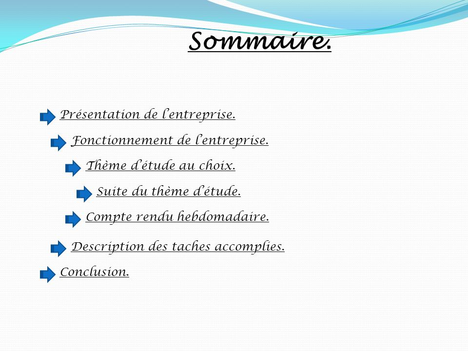 Resume Rapport De Stage Pfe