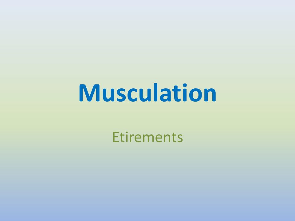 Musculation Etirements