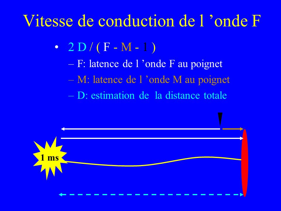 Vitesse de conduction de l 'onde F
