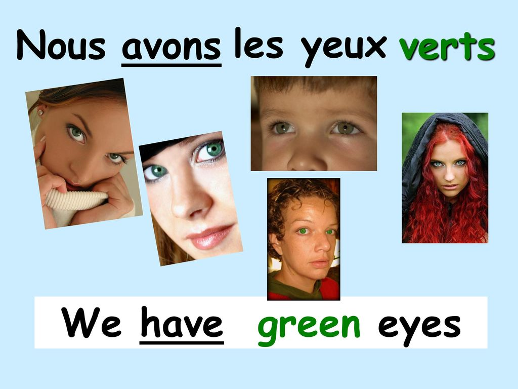 Nous avons les yeux verts We have green eyes