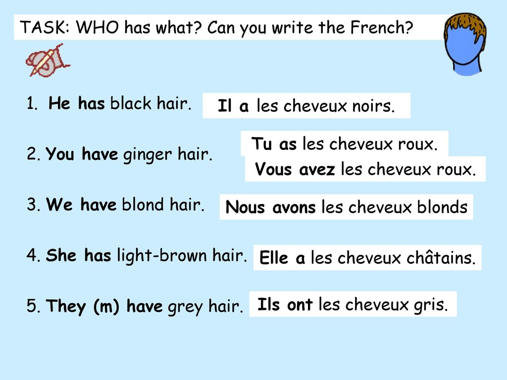 TASK: WHO has what Can you write the French