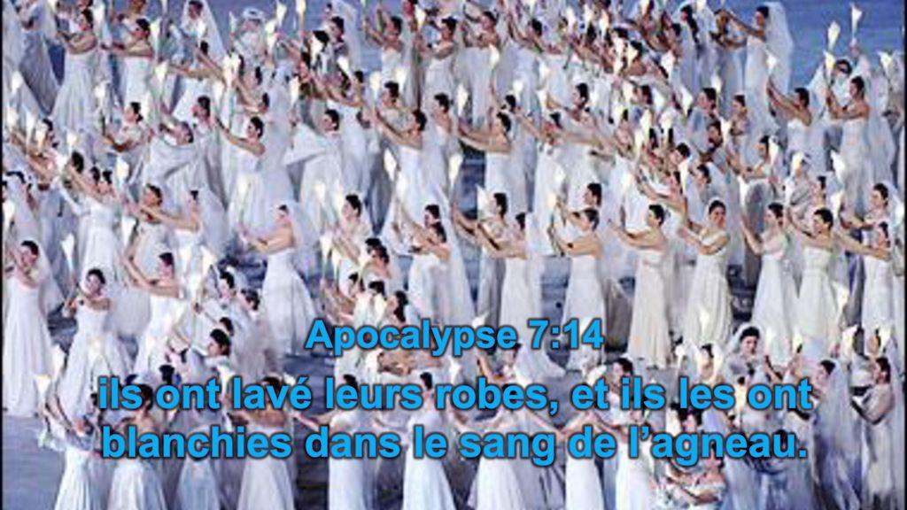 Les martyrs de l'Eglise primitive -  À lire ! Merci mon Dieu de pouvoir encore professer notre foi ♥ Apocalypse+7%3A14+ils+ont+lav%C3%A9+leurs+robes%2C+et+ils+les+ont+blanchies+dans+le+sang+de+l%E2%80%99agneau.