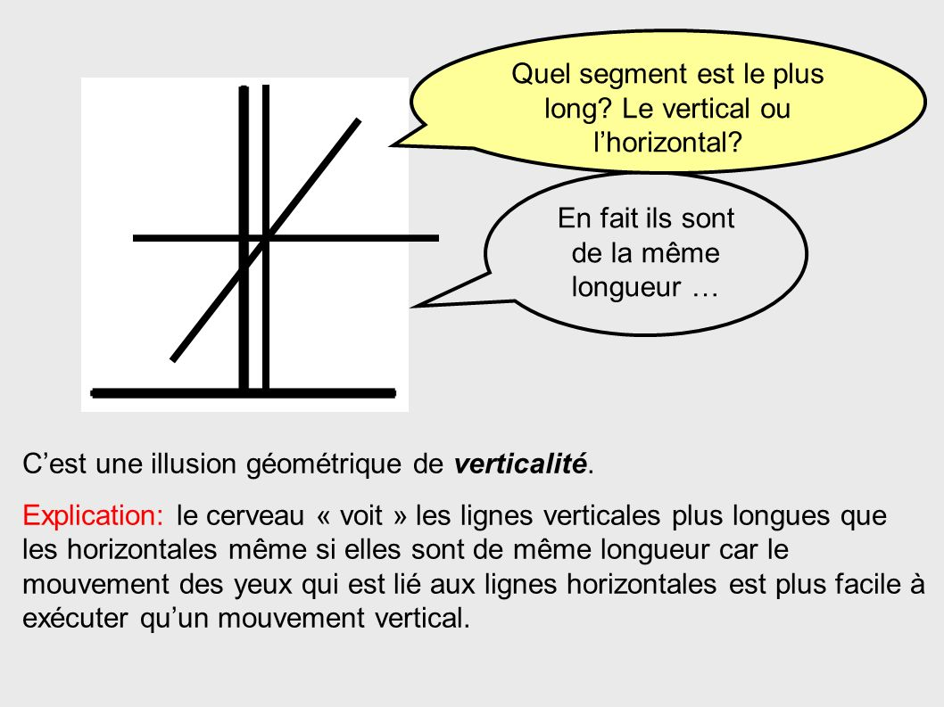 Quel segment est le plus long Le vertical ou l'horizontal