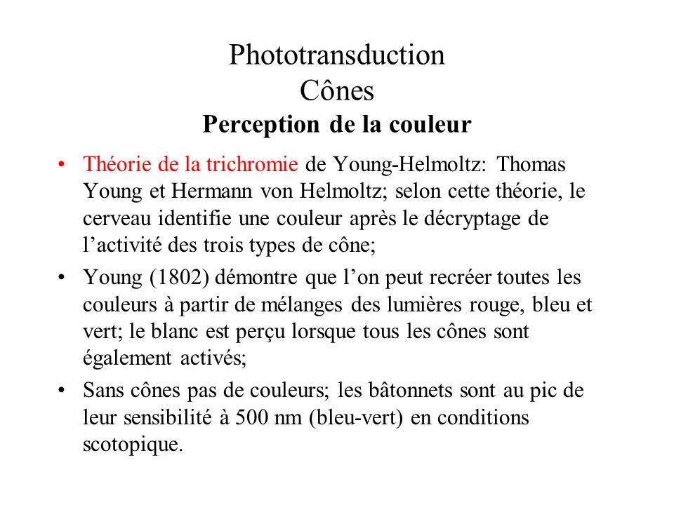 Phototransduction Cônes Perception de la couleur