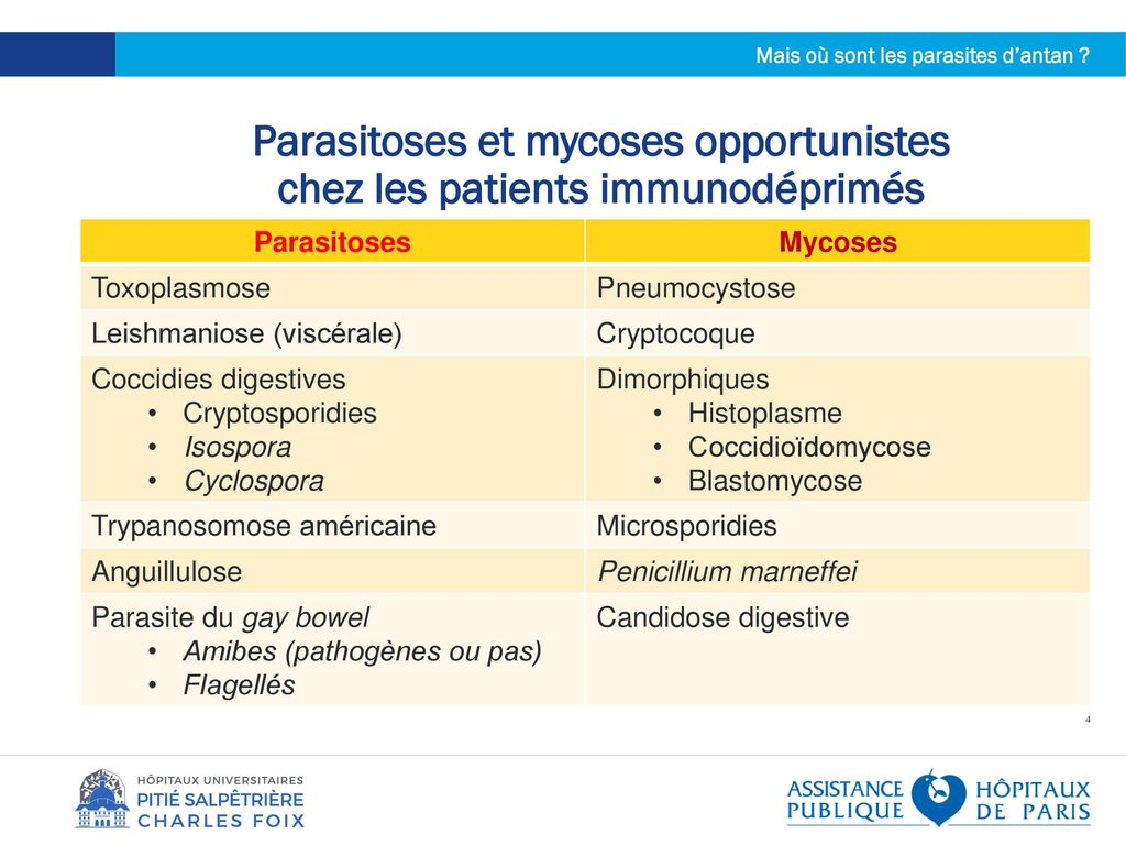 les parasites opportunistes
