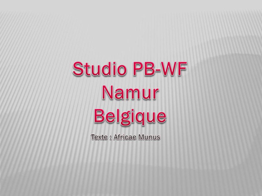 studio namur belgique