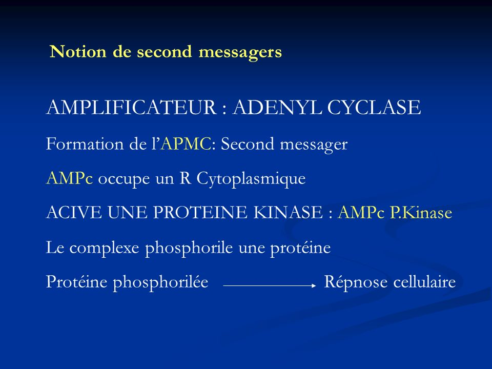 AMPLIFICATEUR : ADENYL CYCLASE