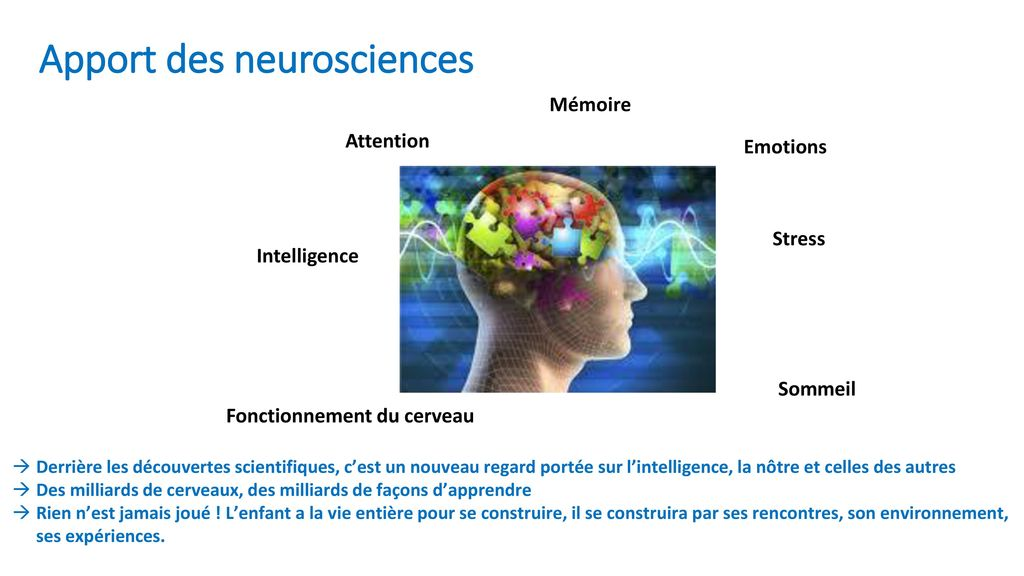 Apport des neurosciences
