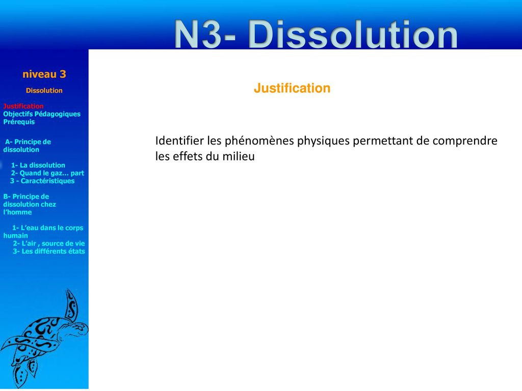 N3- Dissolution Justification