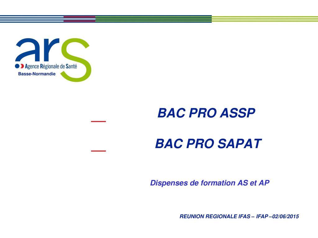 t u00e9l u00e9charger livret de stage bac pro assp pdf