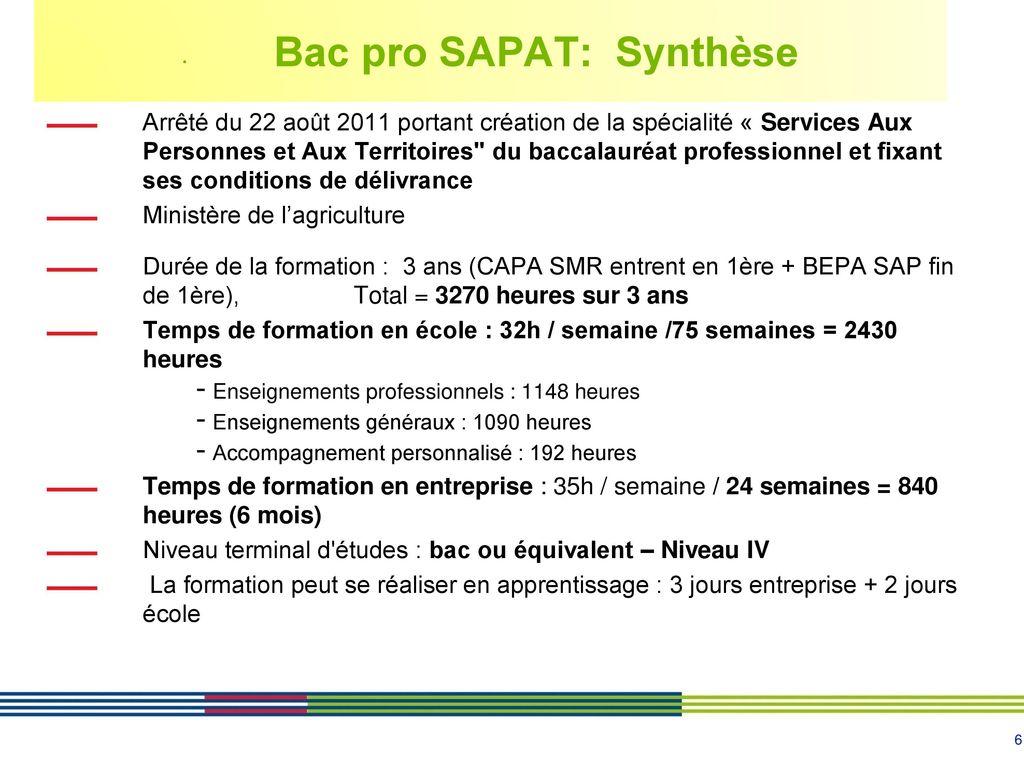 Bac Pro Assp Bac Pro Sapat Ppt Télécharger