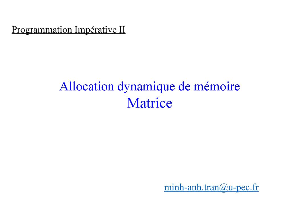 Allocation Dynamique De Memoire Ppt Telecharger