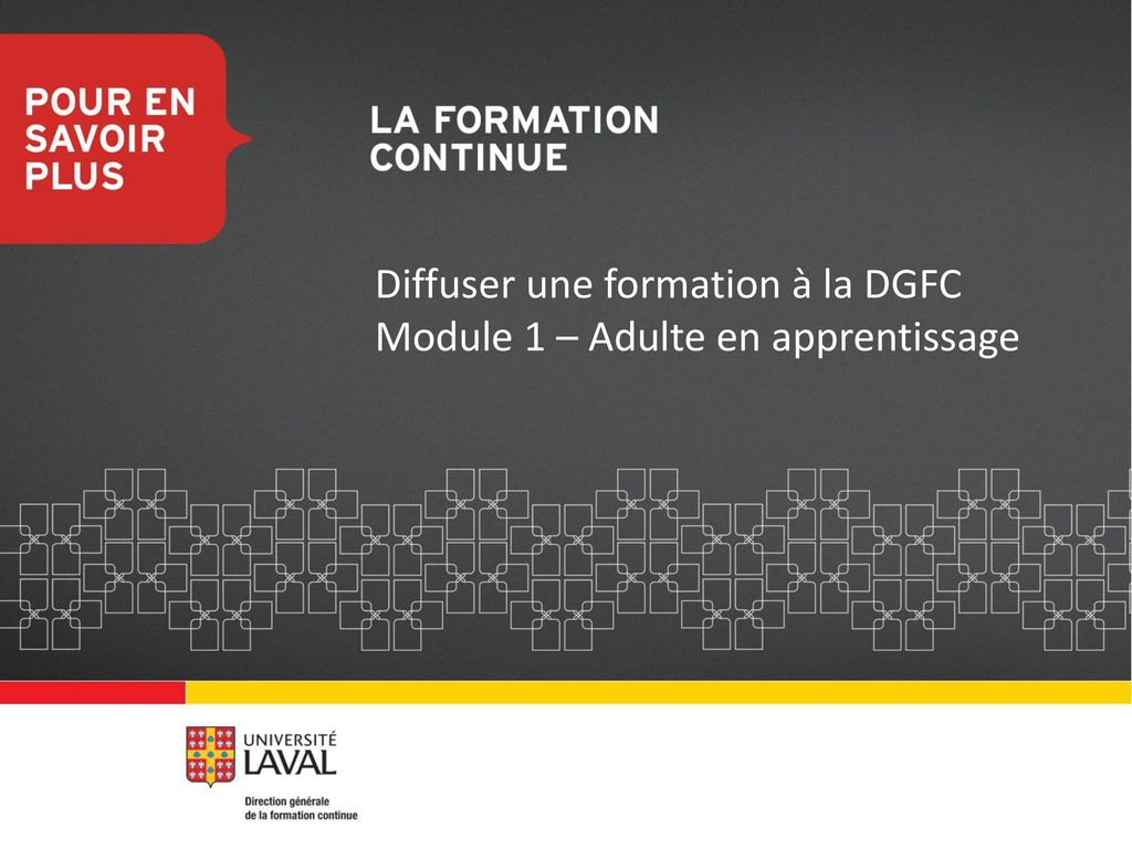 formation 1 an adulte