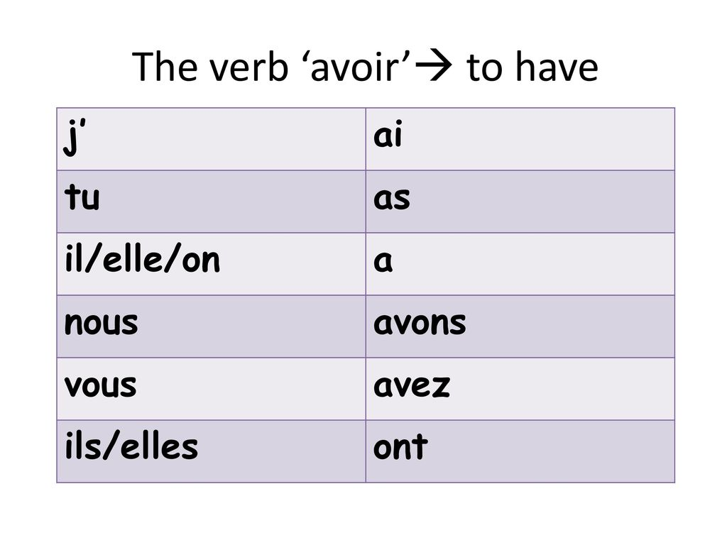 The verb 'avoir' to have