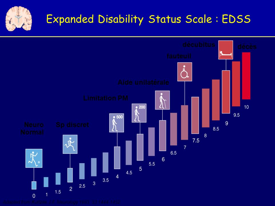 Expanded Disability Status Scale : EDSS