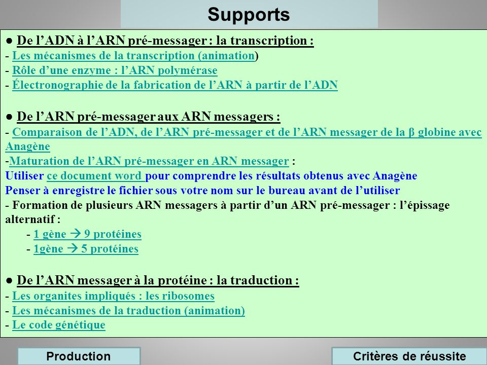Supports ● De l'ADN à l'ARN pré-messager : la transcription :
