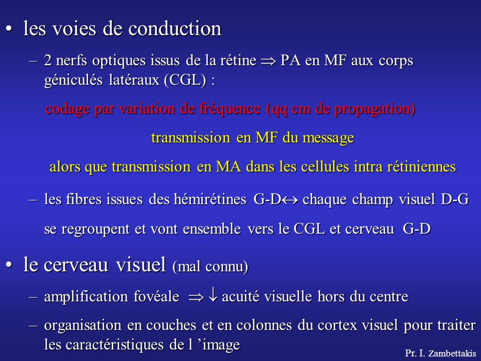 les voies de conduction