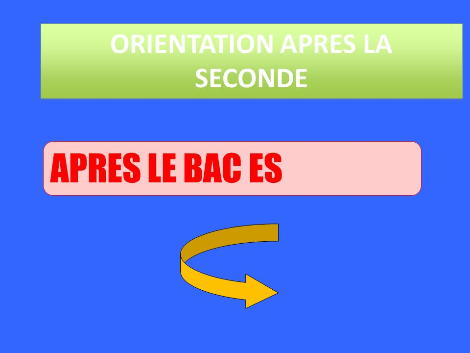 ORIENTATION APRES LA SECONDE APRES LE BAC ES