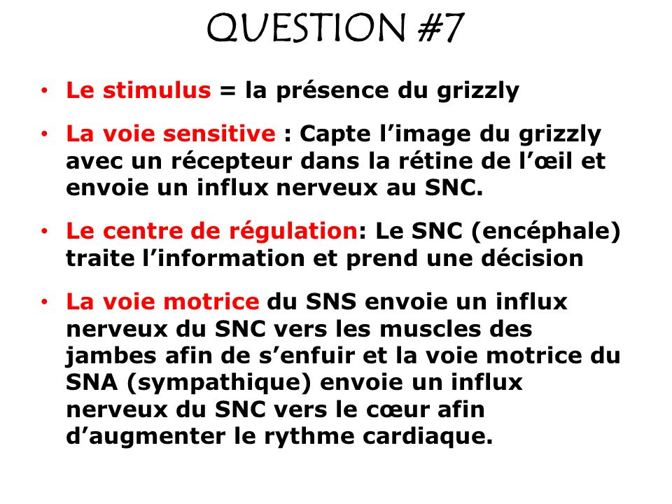 QUESTION #7 Le stimulus = la présence du grizzly