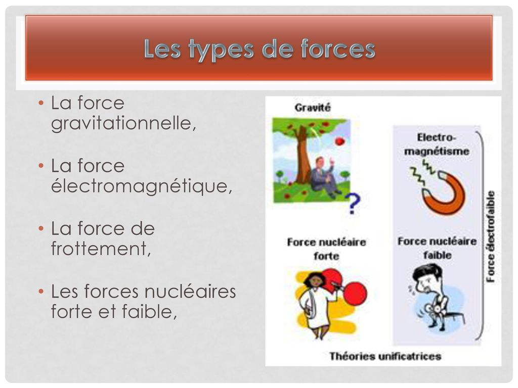 Les types de forces La force gravitationnelle,