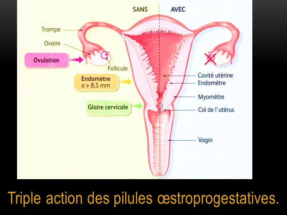Triple action des pilules œstroprogestatives.
