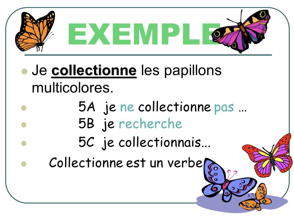 EXEMPLE Je collectionne les papillons multicolores.