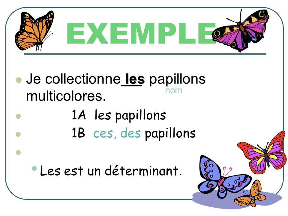 EXEMPLE Je collectionne les papillons multicolores. 1A les papillons