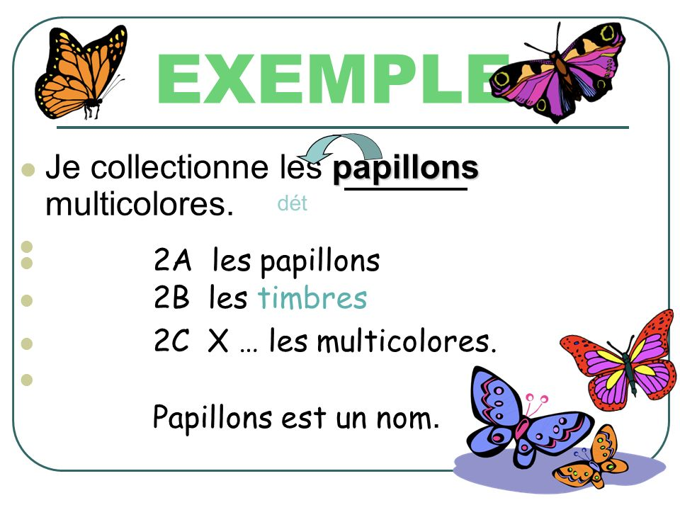 EXEMPLE Je collectionne les papillons multicolores. 2A les papillons