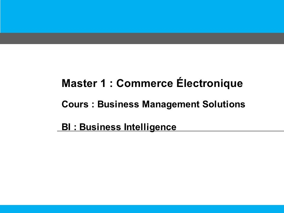 Master 1 : Commerce Électronique Cours : Business Management Solutions BI : Business Intelligence