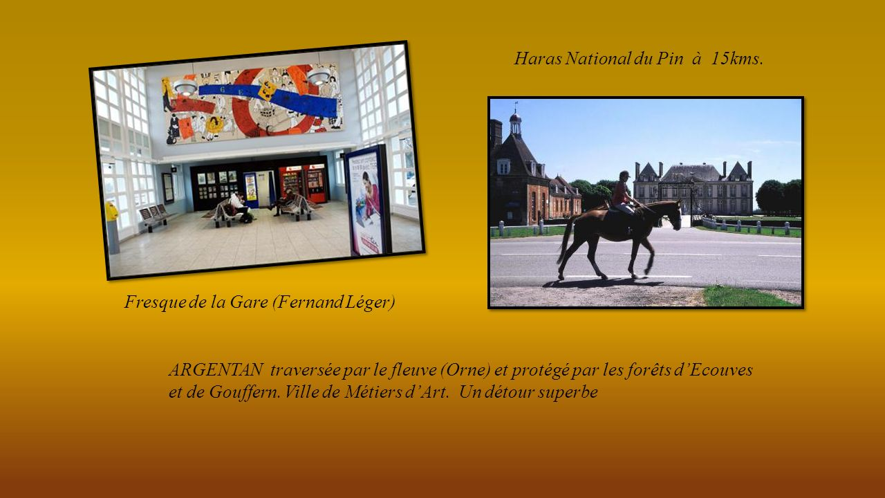 Haras National du Pin à 15kms.
