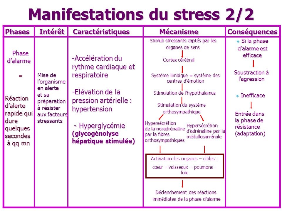 Manifestations du stress 2/2