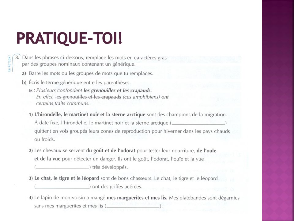 Pratique-toi! LE GUIDE grammatical au secondaire, Éditions Grand Duc, p.24 (livre orange)