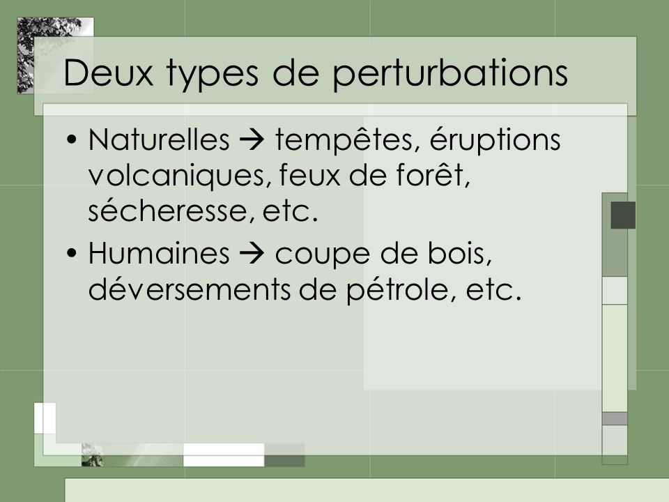 Deux types de perturbations