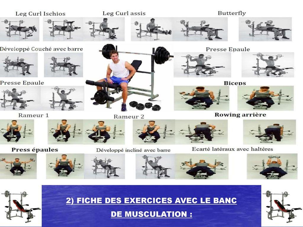 Dossier Des Exercices Avec Le Banc De Musculation Ppt Télécharger