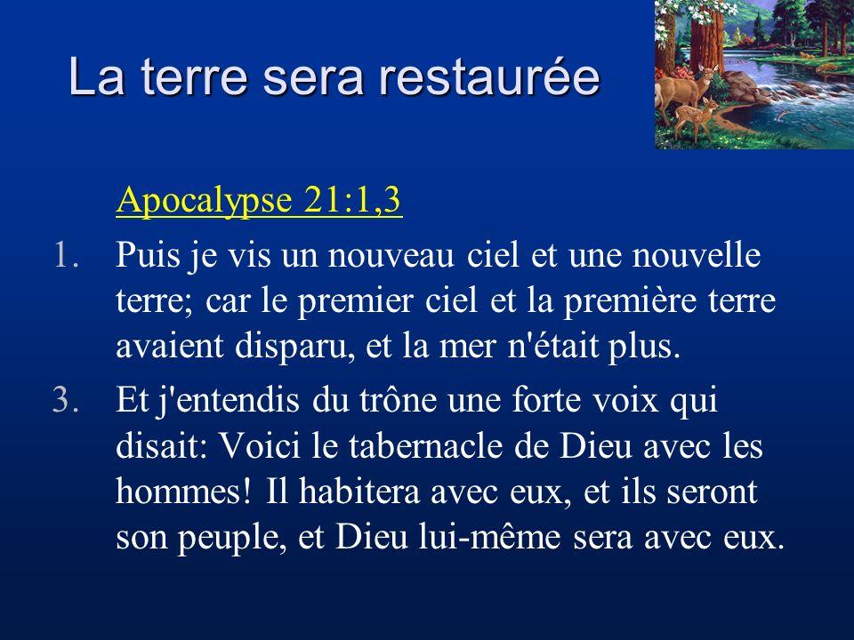 Que fait Jésus au ciel dans son sanctuaire ? - ppt video online télécharger
