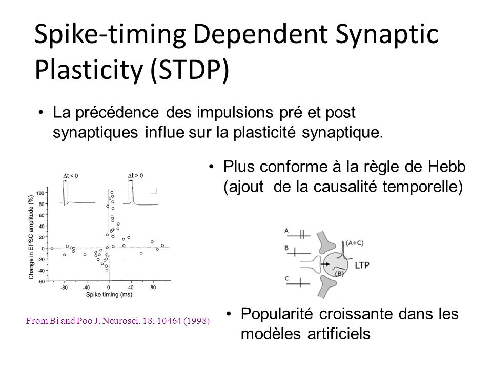 Spike-timing Dependent Synaptic Plasticity (STDP)