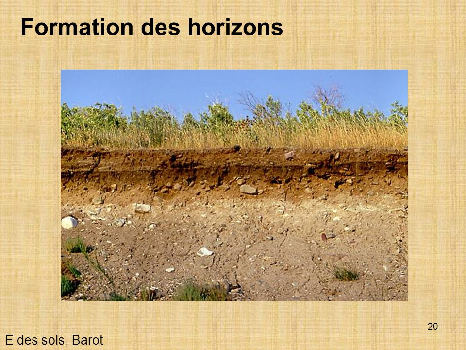 Formation des horizons