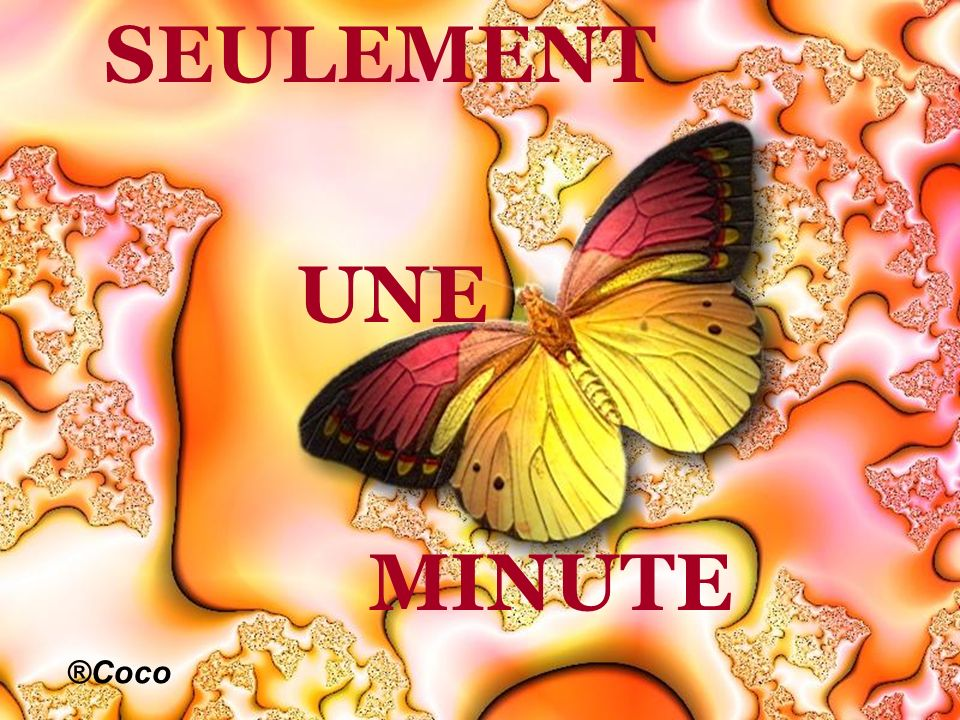 SEULEMENT UNE MINUTE ®Coco