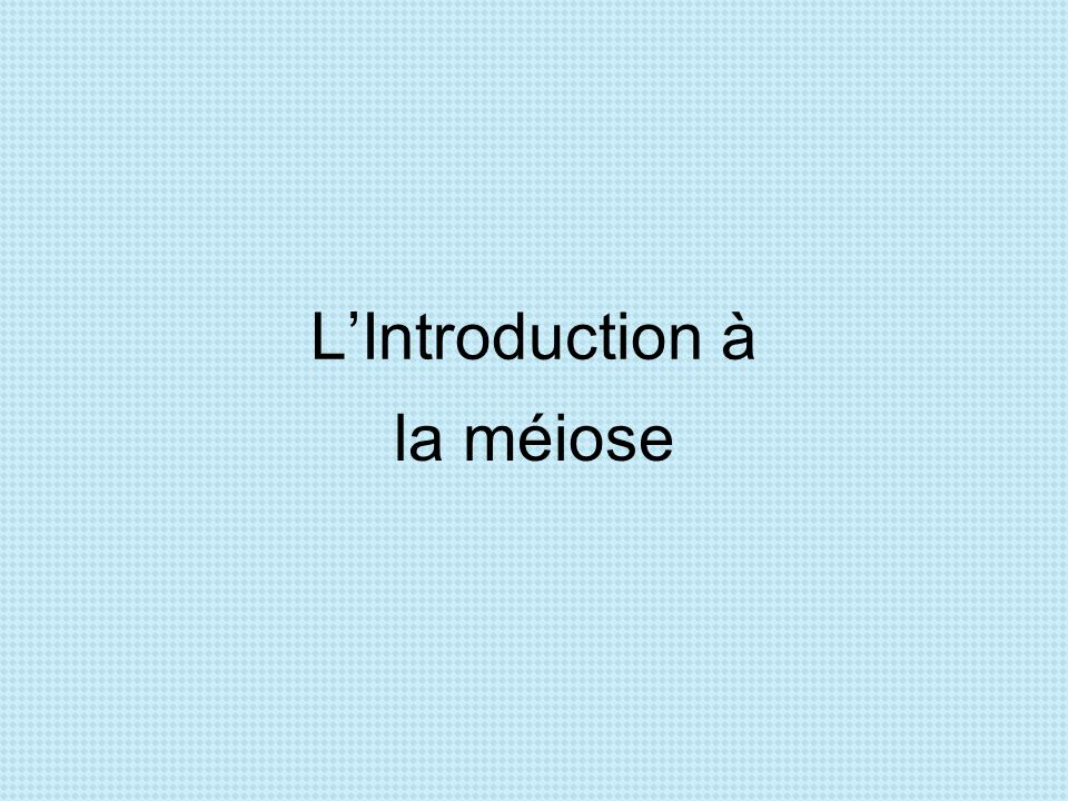 L'Introduction à la méiose