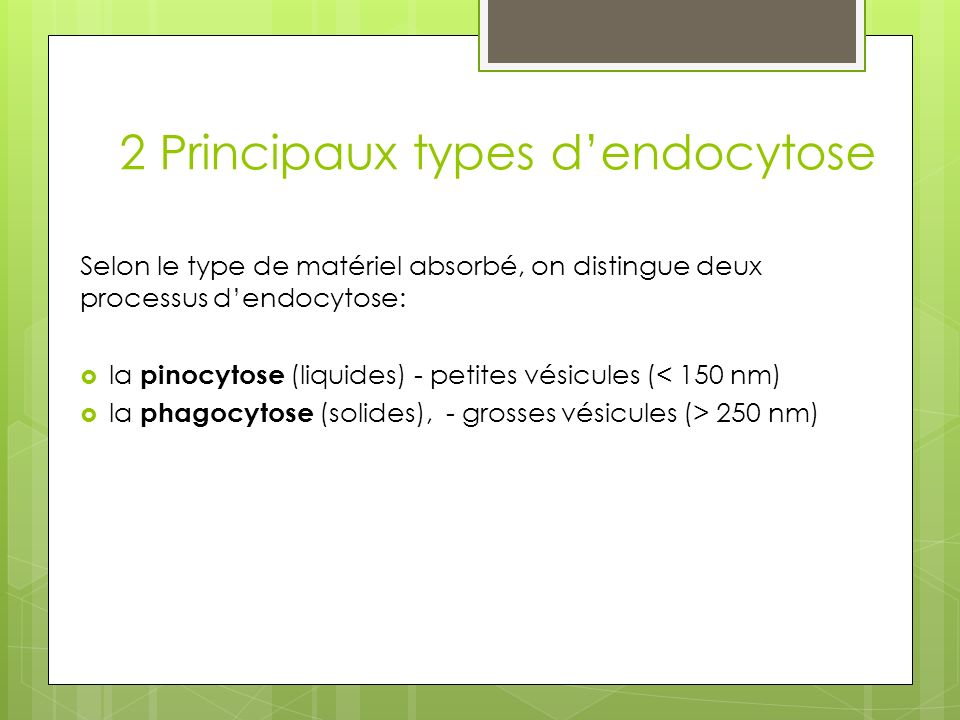 2 Principaux types d'endocytose