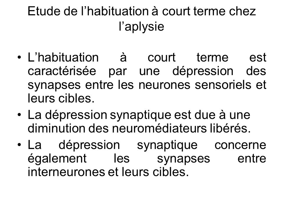 Etude de l'habituation à court terme chez l'aplysie
