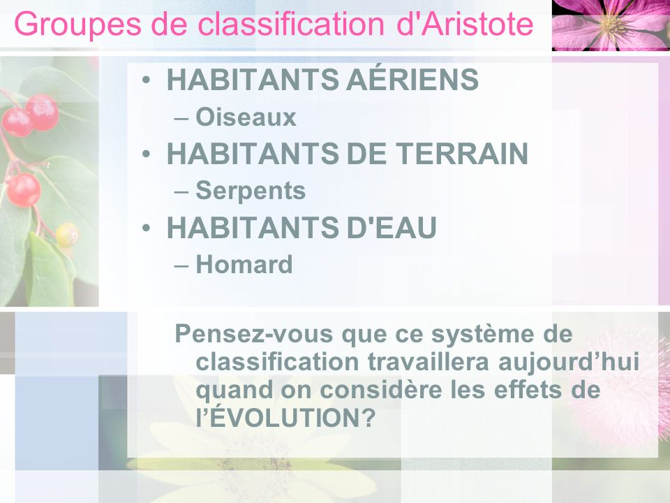 Groupes de classification d Aristote