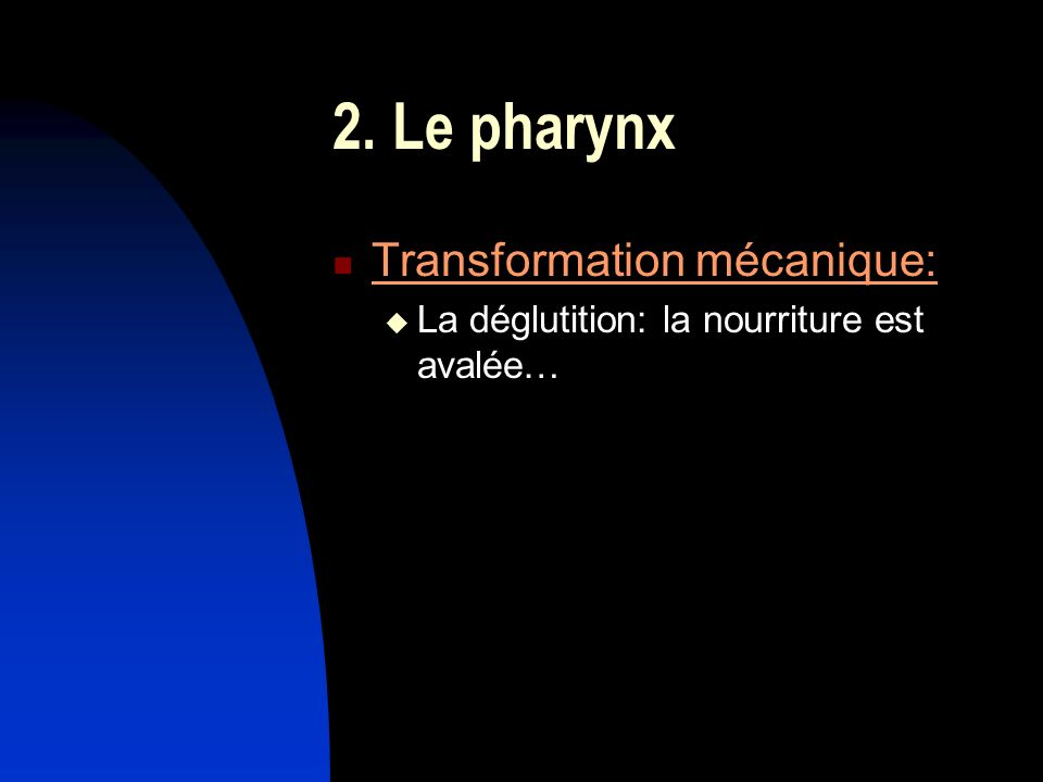 2. Le pharynx Transformation mécanique: