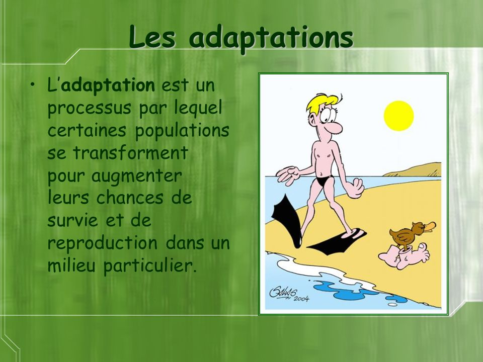 Les adaptations