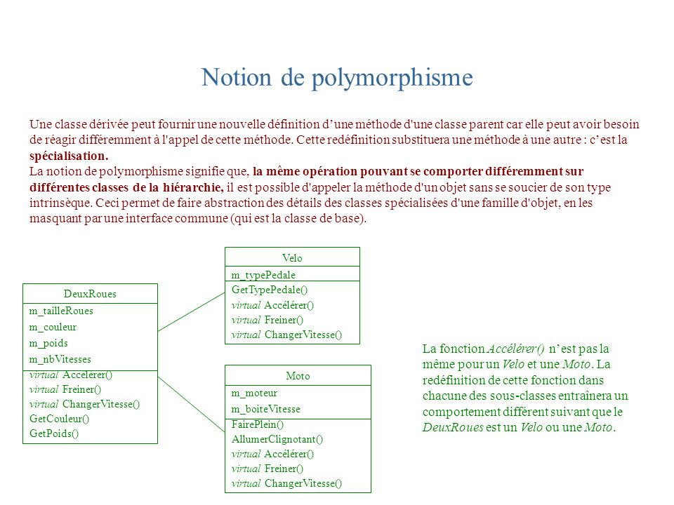 Notion de polymorphisme