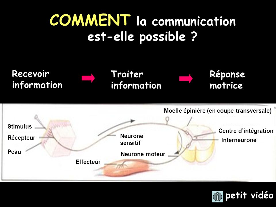 COMMENT la communication