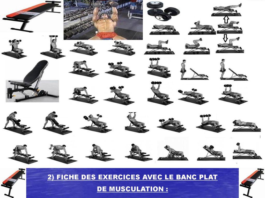 Dossier Des Exercices Avec Le Banc Plat De Musculation Ppt Télécharger