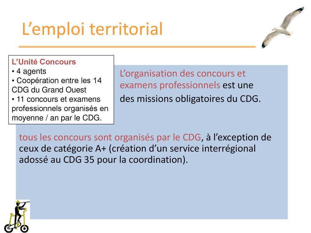 9c03567a83e L emploi territorial L Unité Concours. 4 agents. Coopération entre les 14