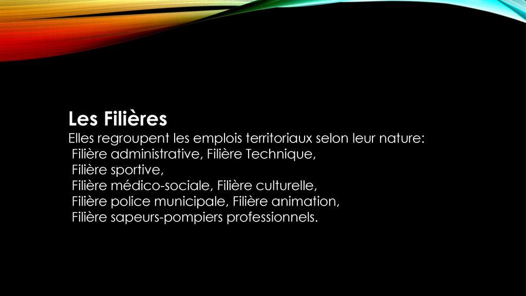 e5c76bacab7 6 Les Filières Elles regroupent les emplois territoriaux selon leur nature   ...