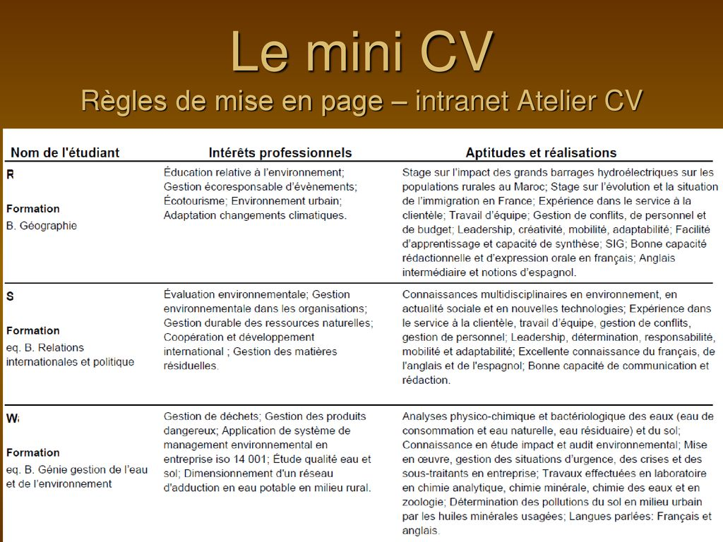 Le Mini Cv Le Curriculum Vitae Et La Lettre De Présentation